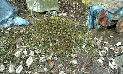 堆肥の元を粉砕すると