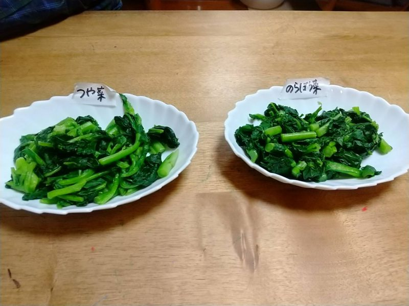 のらぼう菜とつや菜
